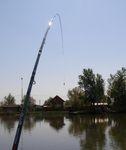 Úsztatva a Duna-ágon