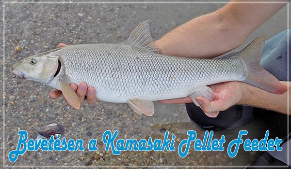 Bevetésen a Kamasaki Pellet Feeder